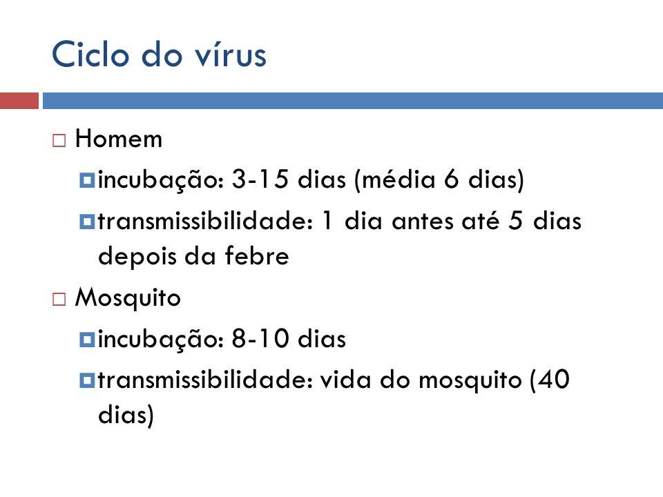Ciclo do vírus Homem incubação: 3-15 dias (média 6 dias) transmissibilidade: 1 dia antes até 5 dias depois da febre Mosquito incubação: 8-10 dias tran