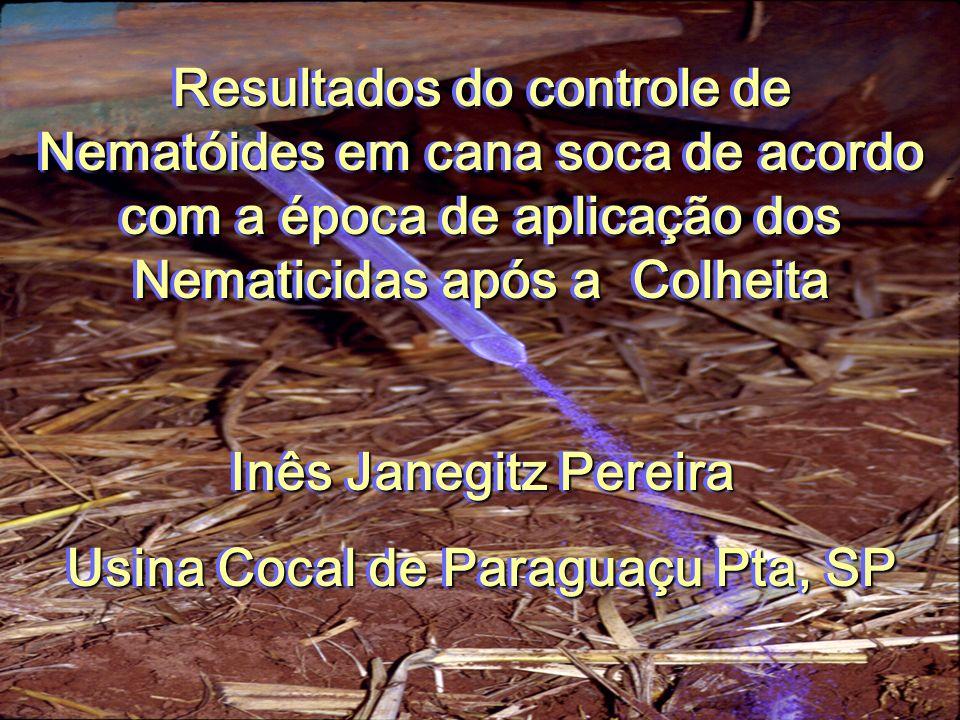 Resultados do controle de Nematóides em cana soca de acordo com a época de aplicação dos Nematicidas após a Colheita Inês Janegitz Pereira Usina Cocal