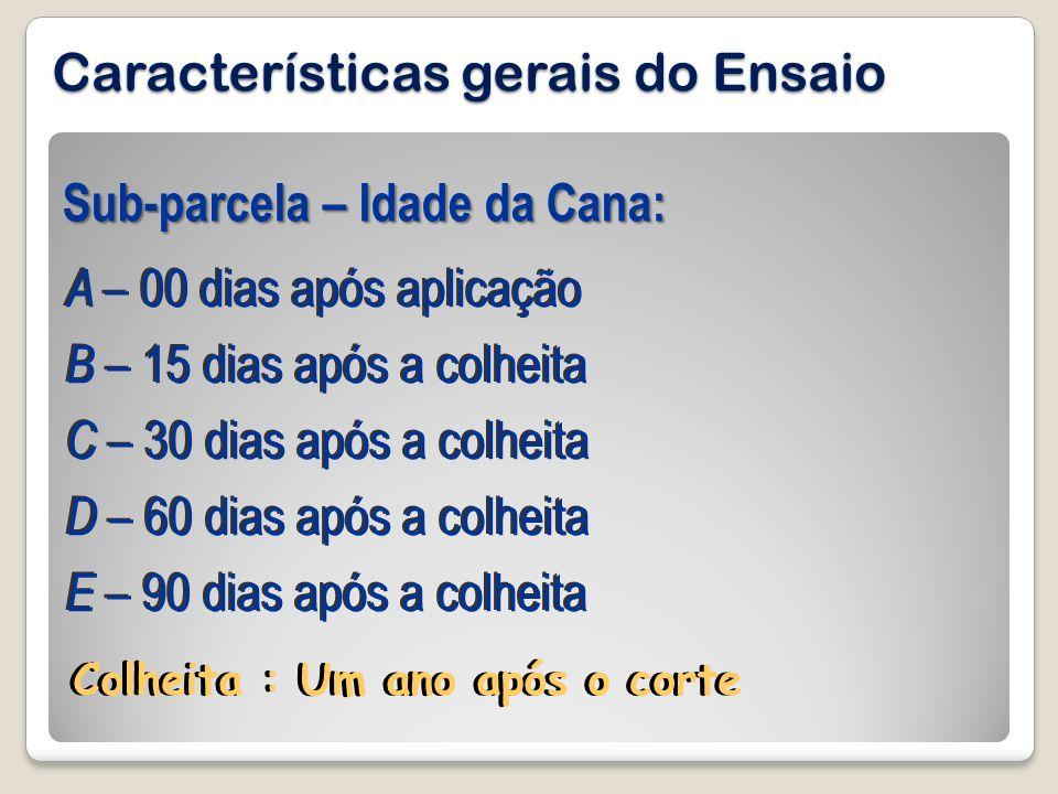 Características gerais do Ensaio A – 00 dias após aplicação B – 15 dias após a colheita C – 30 dias após a colheita D – 60 dias após a colheita E – 90
