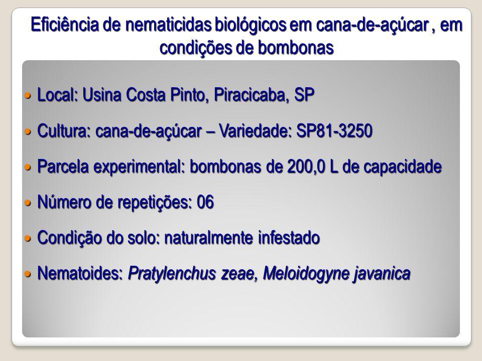 Eficiência de nematicidas biológicos em cana-de-açúcar, em condições de bombonas Local: Usina Costa Pinto, Piracicaba, SP Local: Usina Costa Pinto, Pi