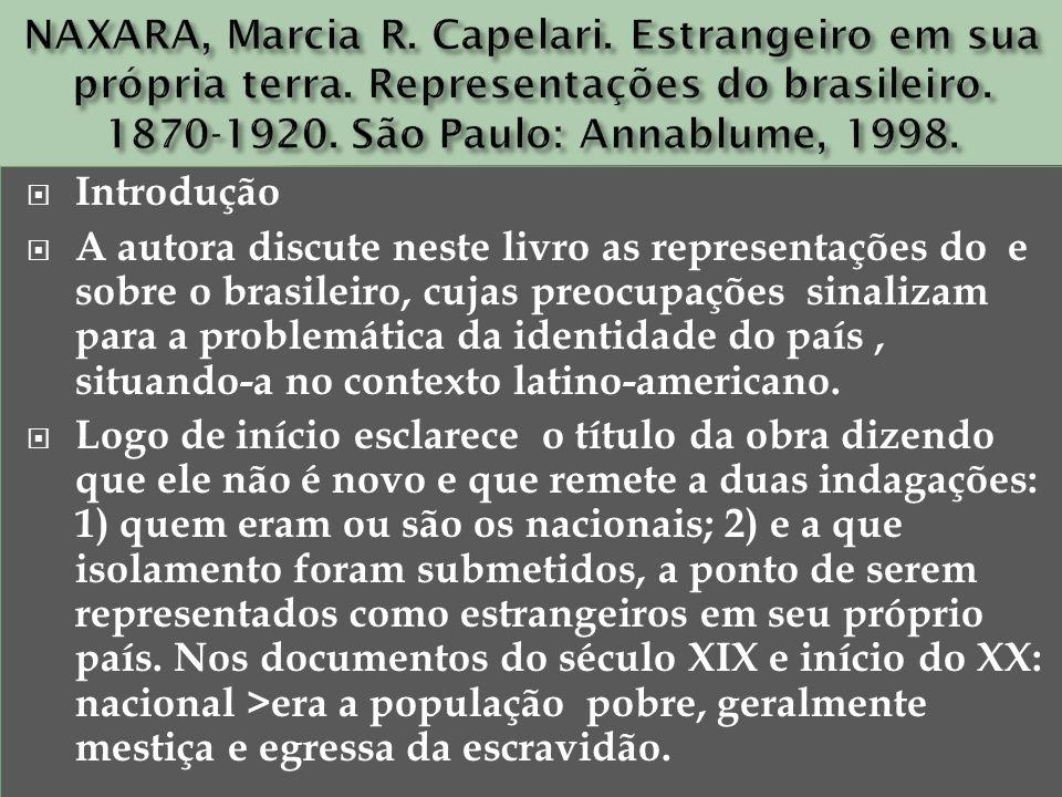 Introdução A autora discute neste livro as representações do e sobre o brasileiro, cujas preocupações sinalizam para a problemática da identidade do p