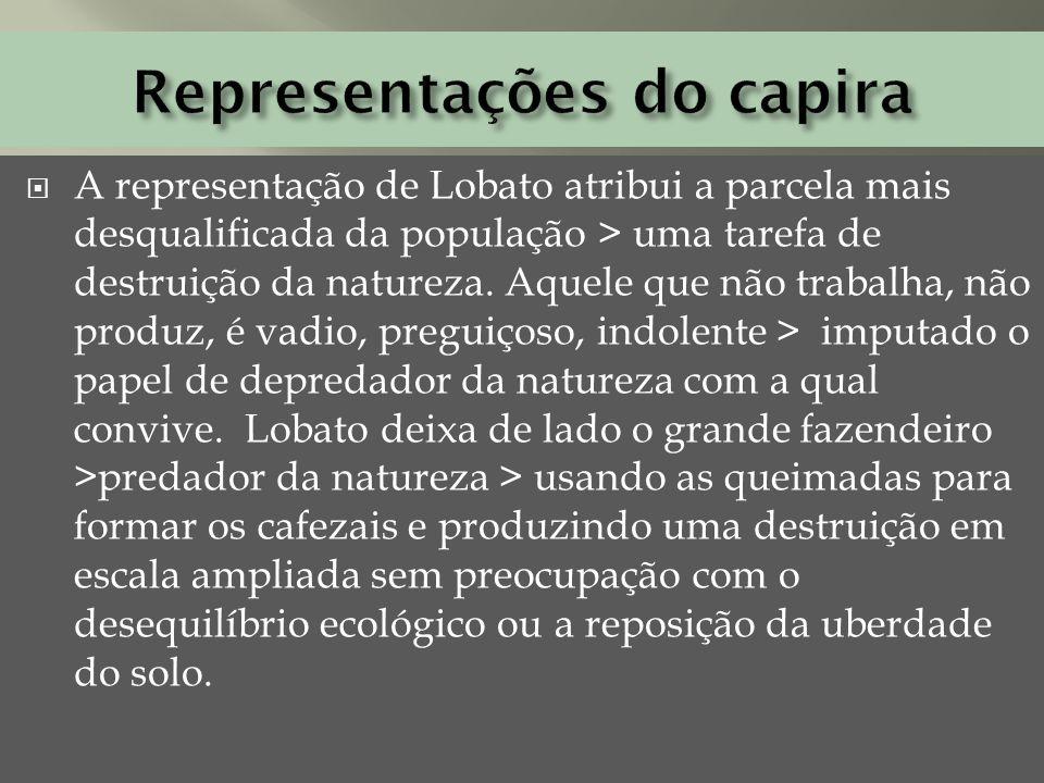 A representação de Lobato atribui a parcela mais desqualificada da população > uma tarefa de destruição da natureza. Aquele que não trabalha, não prod