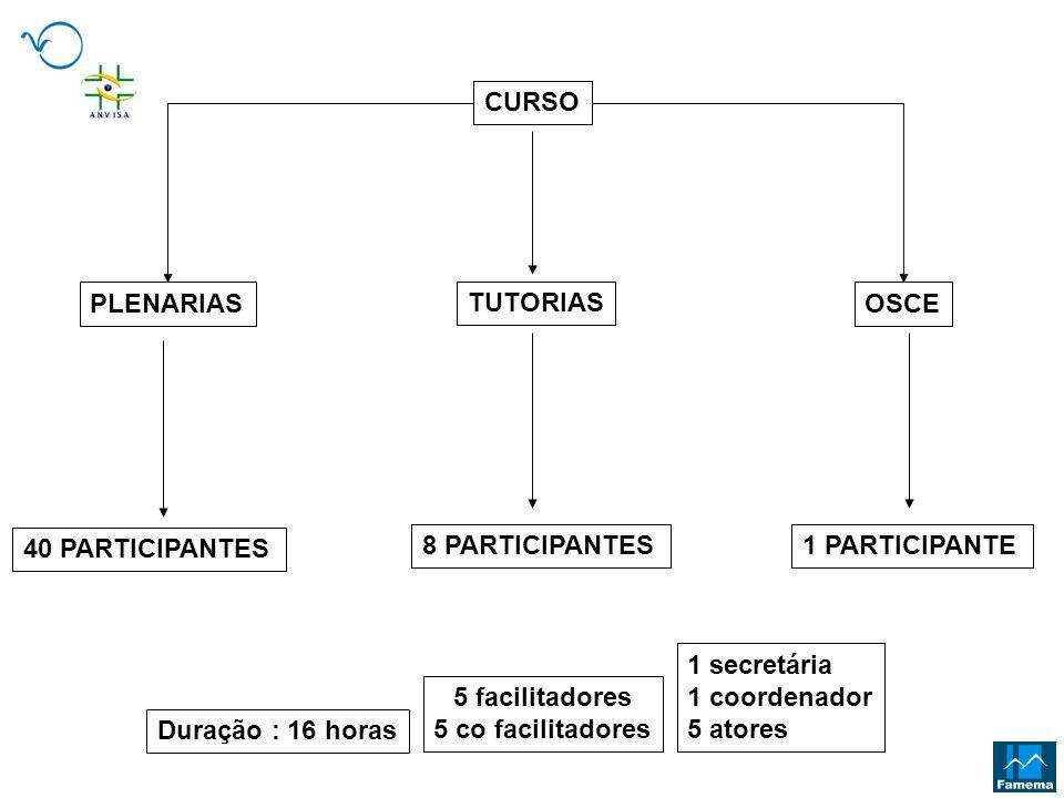 CURSO TUTORIAS OSCEPLENARIAS 40 PARTICIPANTES 8 PARTICIPANTES1 PARTICIPANTE Duração : 16 horas 5 facilitadores 5 co facilitadores 1 secretária 1 coord