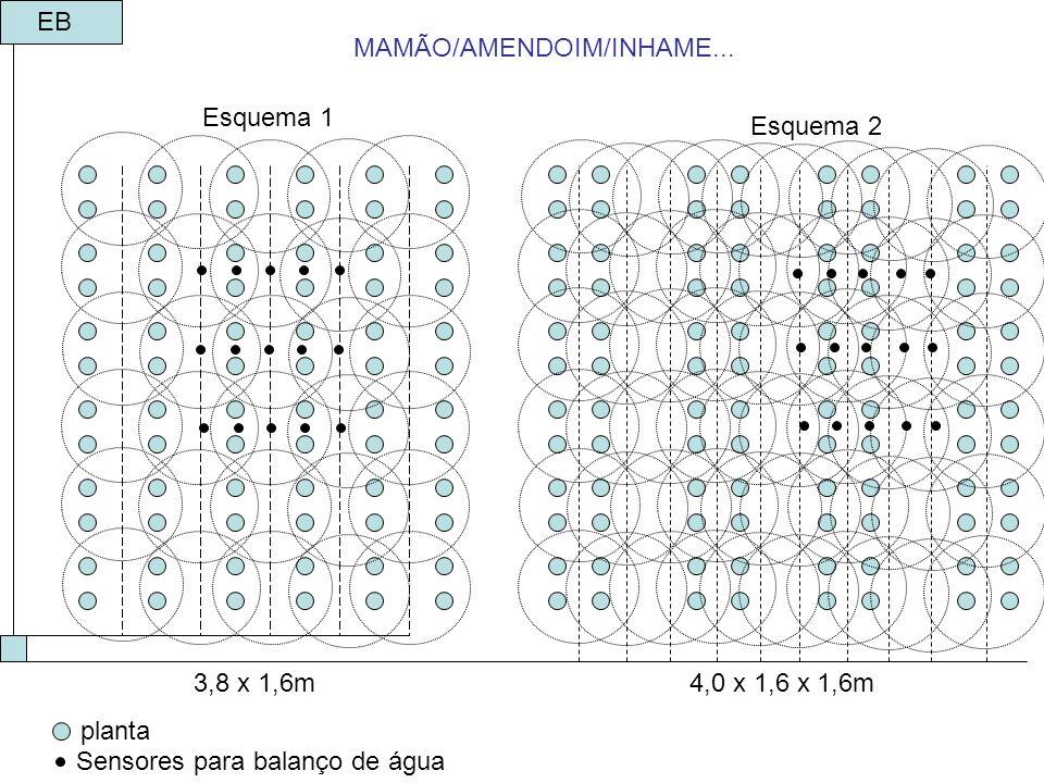 Esquema 1 Esquema 2 3,8 x 1,6m4,0 x 1,6 x 1,6m EB MAMÃO/AMENDOIM/INHAME... planta Sensores para balanço de água