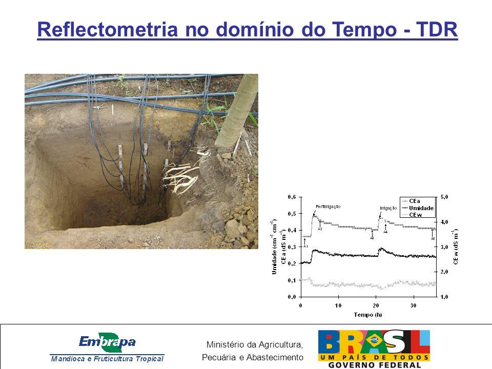 Ministério da Agricultura, Pecuária e Abastecimento Reflectometria no domínio do Tempo - TDR