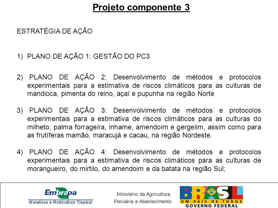 Ministério da Agricultura, Pecuária e Abastecimento Projeto componente 3 ESTRATÉGIA DE AÇÃO 1)PLANO DE AÇÃO 1: GESTÃO DO PC3 2) PLANO DE AÇÃO 2: Desen