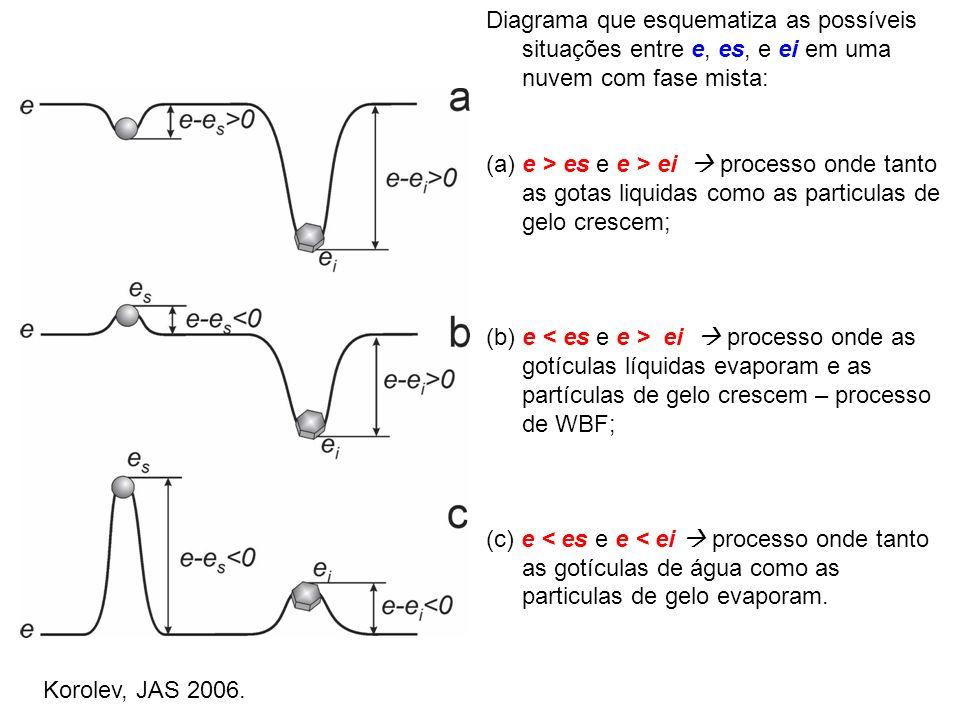 Diagrama que esquematiza as possíveis situações entre e, es, e ei em uma nuvem com fase mista: (a) e > es e e > ei processo onde tanto as gotas liquid