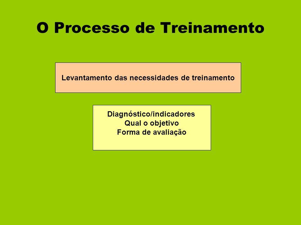 O Processo de Treinamento Levantamento das necessidades de treinamento Diagnóstico/indicadores Qual o objetivo Forma de avaliação