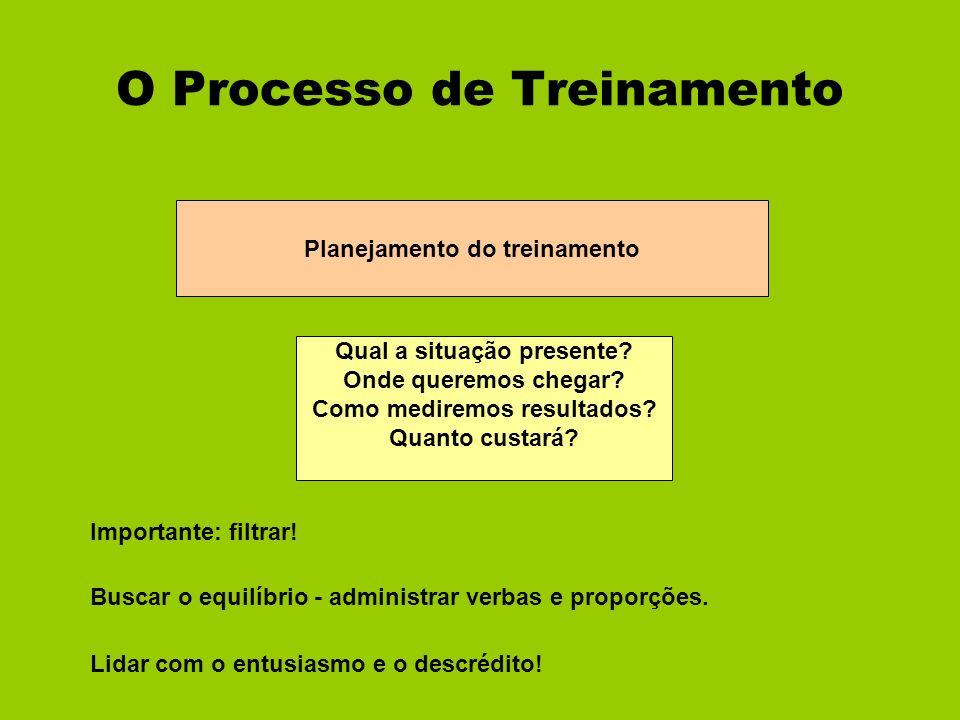O Processo de Treinamento Planejamento do treinamento Qual a situação presente? Onde queremos chegar? Como mediremos resultados? Quanto custará? Impor