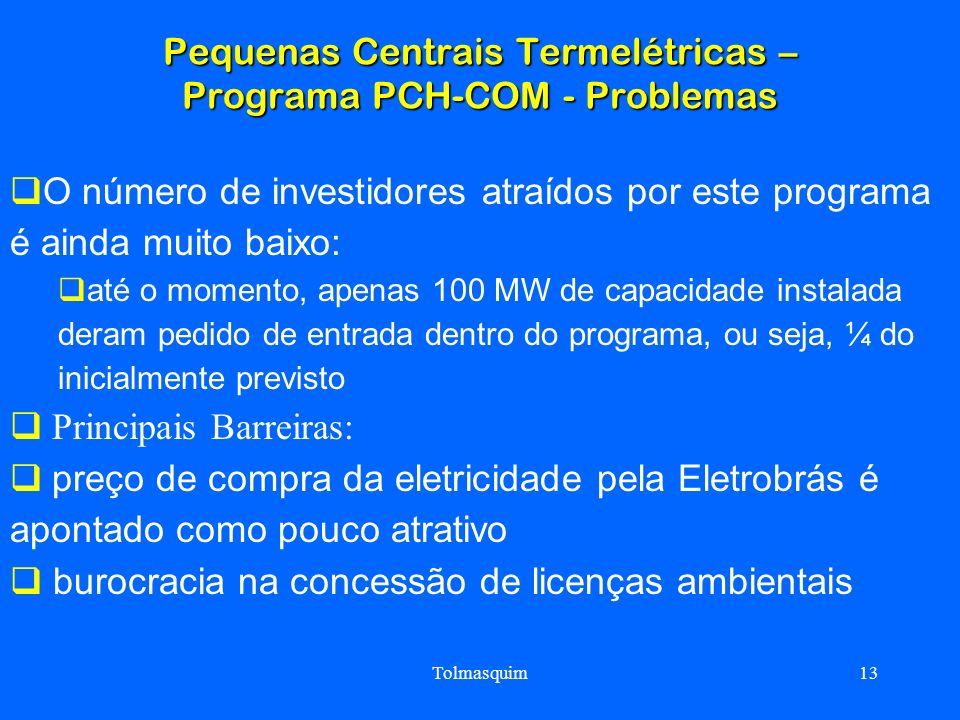 Tolmasquim13 Pequenas Centrais Termelétricas – Programa PCH-COM - Problemas O número de investidores atraídos por este programa é ainda muito baixo: a