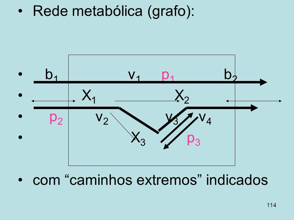 114 Rede metabólica (grafo): b 1 v 1 p 1 b 2 X 1 X 2 p 2 v 2 v 3 v 4 X 3 p 3 com caminhos extremos indicados