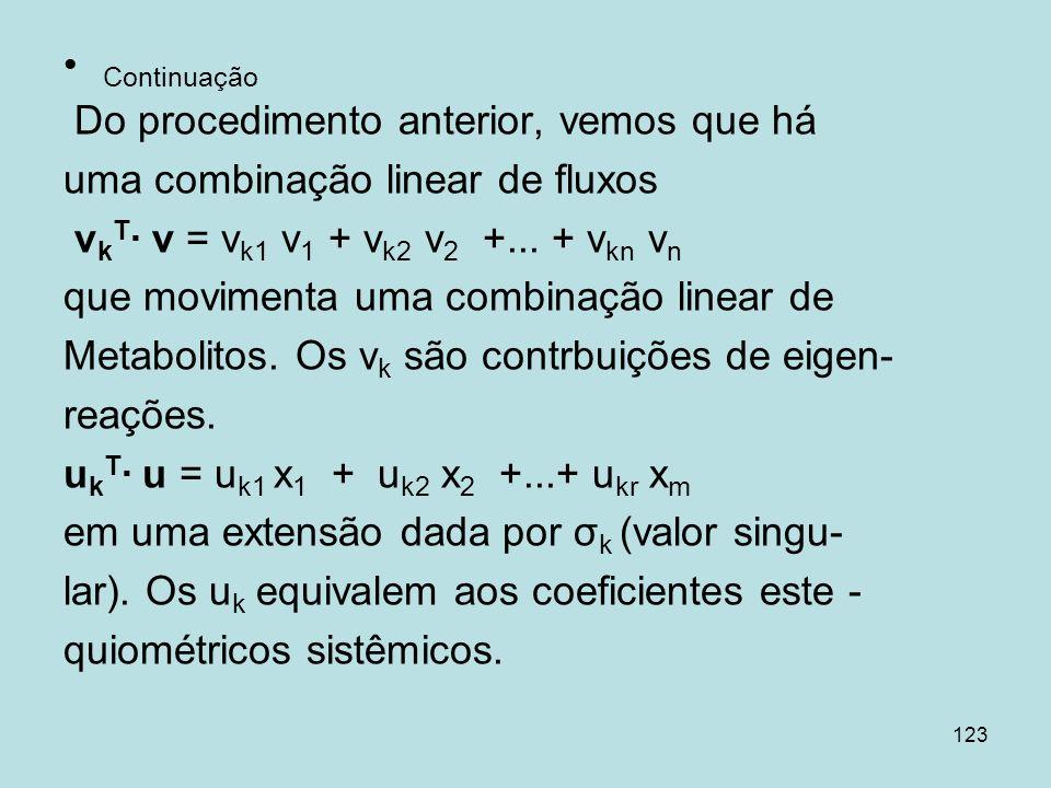 123 Continuação Do procedimento anterior, vemos que há uma combinação linear de fluxos v k T v = v k1 v 1 + v k2 v 2 +... + v kn v n que movimenta uma