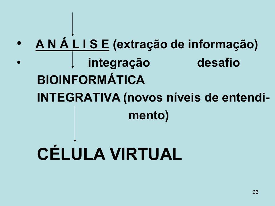 26 A N Á L I S E (extração de informação) integração desafio BIOINFORMÁTICA INTEGRATIVA (novos níveis de entendi- mento) CÉLULA VIRTUAL