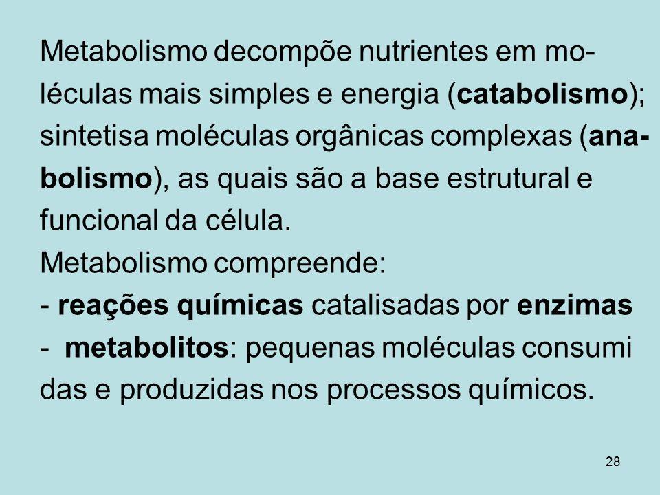 28 Metabolismo decompõe nutrientes em mo- léculas mais simples e energia (catabolismo); sintetisa moléculas orgânicas complexas (ana- bolismo), as qua