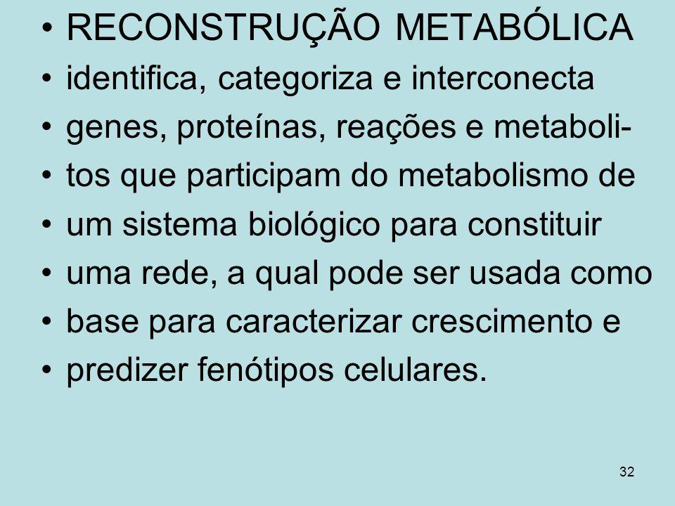 32 RECONSTRUÇÃO METABÓLICA identifica, categoriza e interconecta genes, proteínas, reações e metaboli- tos que participam do metabolismo de um sistema