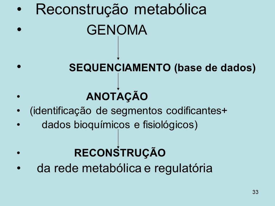 33 Reconstrução metabólica GENOMA SEQUENCIAMENTO (base de dados) ANOTAÇÃO (identificação de segmentos codificantes+ dados bioquímicos e fisiológicos)