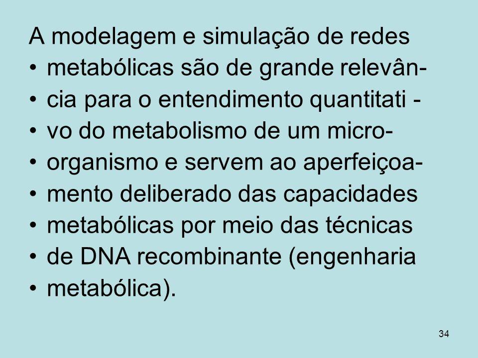 34 A modelagem e simulação de redes metabólicas são de grande relevân- cia para o entendimento quantitati - vo do metabolismo de um micro- organismo e