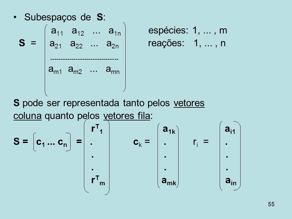 55 Subespaços de S: a 11 a 12... a 1n espécies: 1,..., m S = a 21 a 22... a 2n reações: 1,..., n -------------------------------- a m1 a m2... a mn S