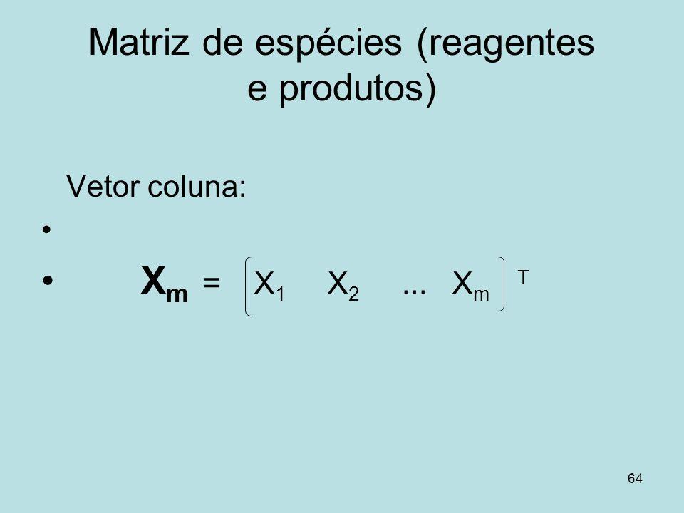 64 Matriz de espécies (reagentes e produtos) Vetor coluna: X m = X 1 X 2... X m T