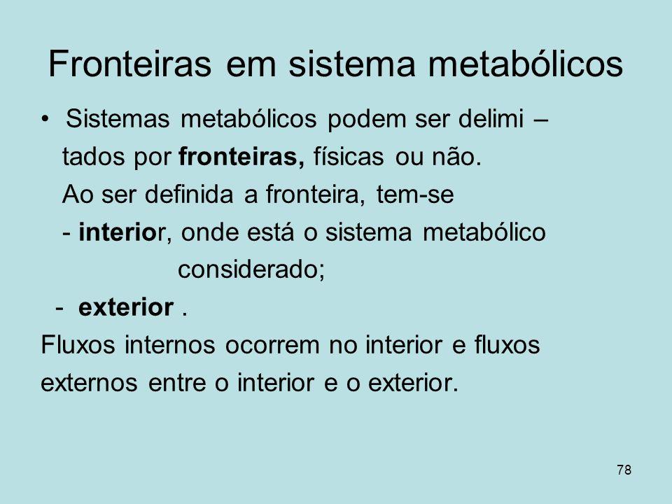 78 Fronteiras em sistema metabólicos Sistemas metabólicos podem ser delimi – tados por fronteiras, físicas ou não. Ao ser definida a fronteira, tem-se