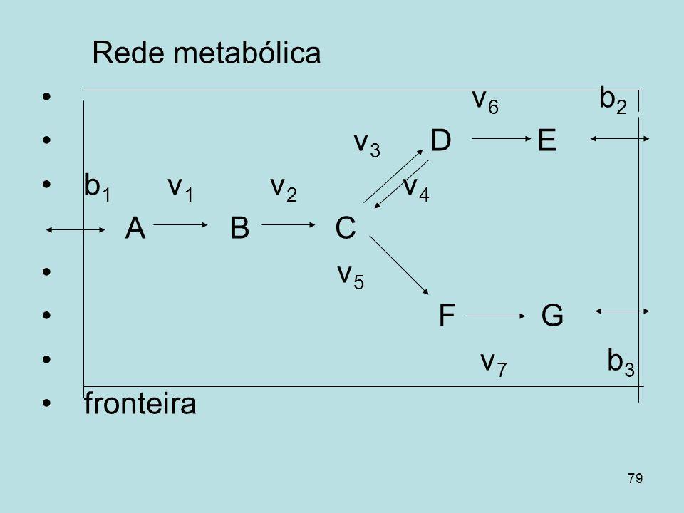 79 Rede metabólica v 6 b 2 v 3 D E b 1 v 1 v 2 v 4 A B C v 5 F G v 7 b 3 fronteira