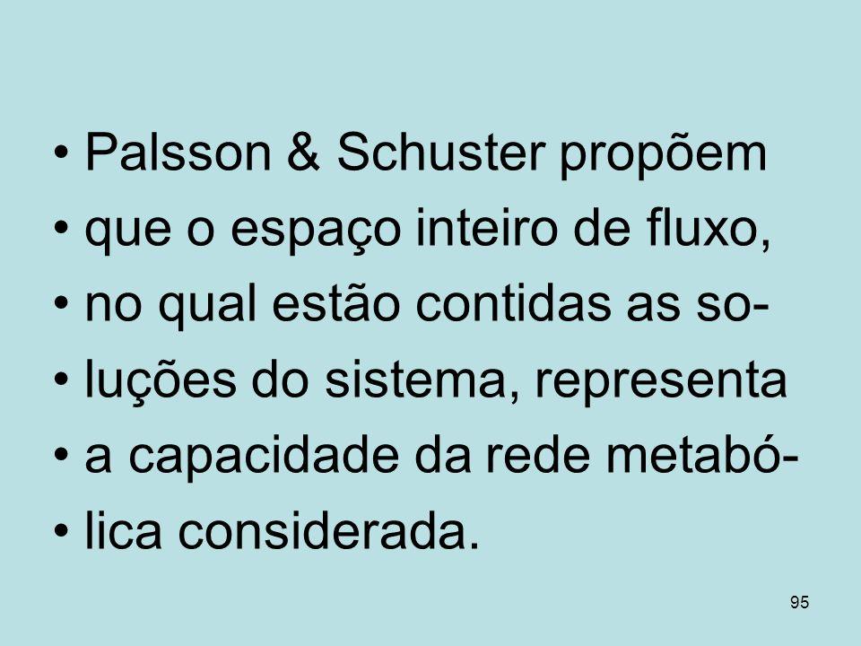 95 Palsson & Schuster propõem que o espaço inteiro de fluxo, no qual estão contidas as so- luções do sistema, representa a capacidade da rede metabó-