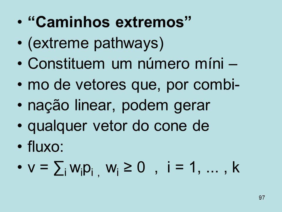 97 Caminhos extremos (extreme pathways) Constituem um número míni – mo de vetores que, por combi- nação linear, podem gerar qualquer vetor do cone de