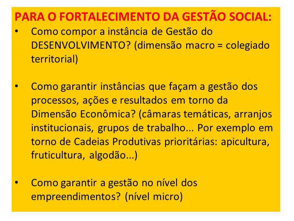 PARA O FORTALECIMENTO DA GESTÃO SOCIAL: Como compor a instância de Gestão do DESENVOLVIMENTO? (dimensão macro = colegiado territorial) Como garantir i