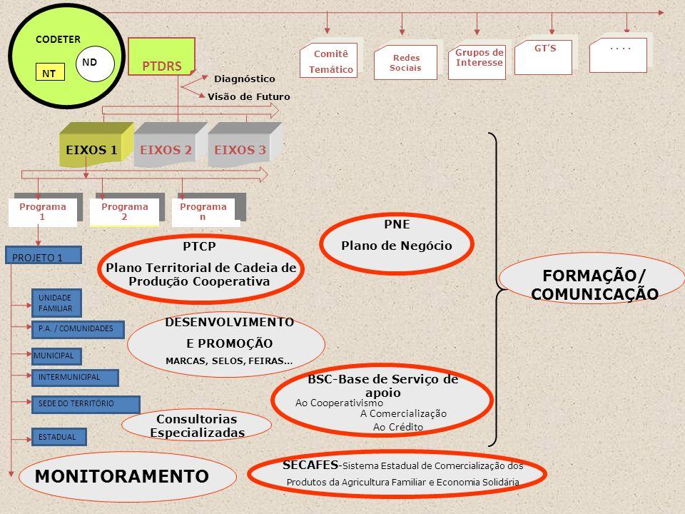 PROJETO 1 Programa 2 Programa n Programa 1 ND CODETER NT PTDRS Visão de Futuro Diagnóstico EIXOS 1EIXOS 2EIXOS 3 UNIDADE FAMILIAR P.A. / COMUNIDADES M