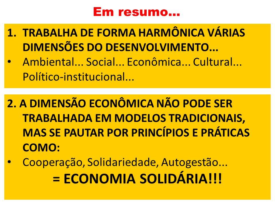 Em resumo... 1.TRABALHA DE FORMA HARMÔNICA VÁRIAS DIMENSÕES DO DESENVOLVIMENTO... Ambiental... Social... Econômica... Cultural... Político-institucion