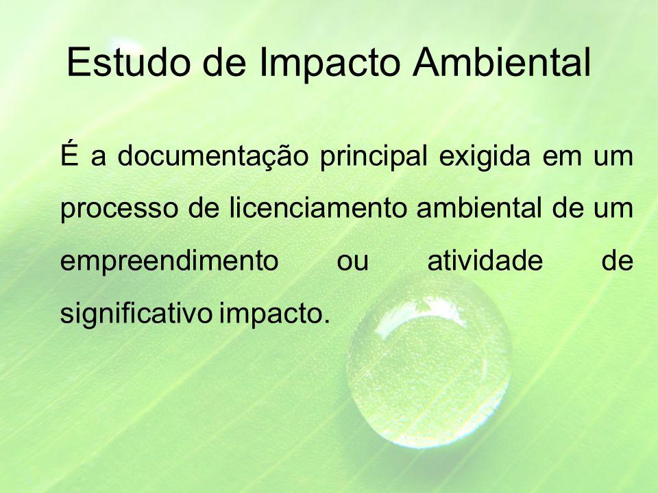 Estudo de Impacto Ambiental É a documentação principal exigida em um processo de licenciamento ambiental de um empreendimento ou atividade de significativo impacto.