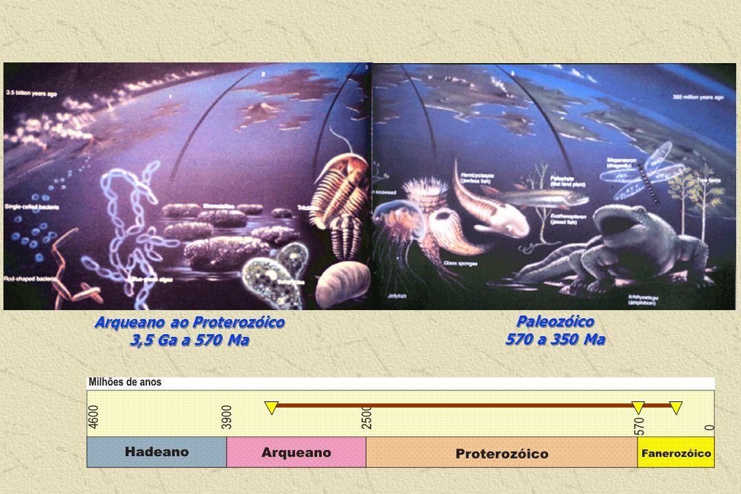 Evolução da Vida na Terra Arqueano ao Proterozóico 3,5 Ga a 570 Ma Paleozóico 570 a 350 Ma