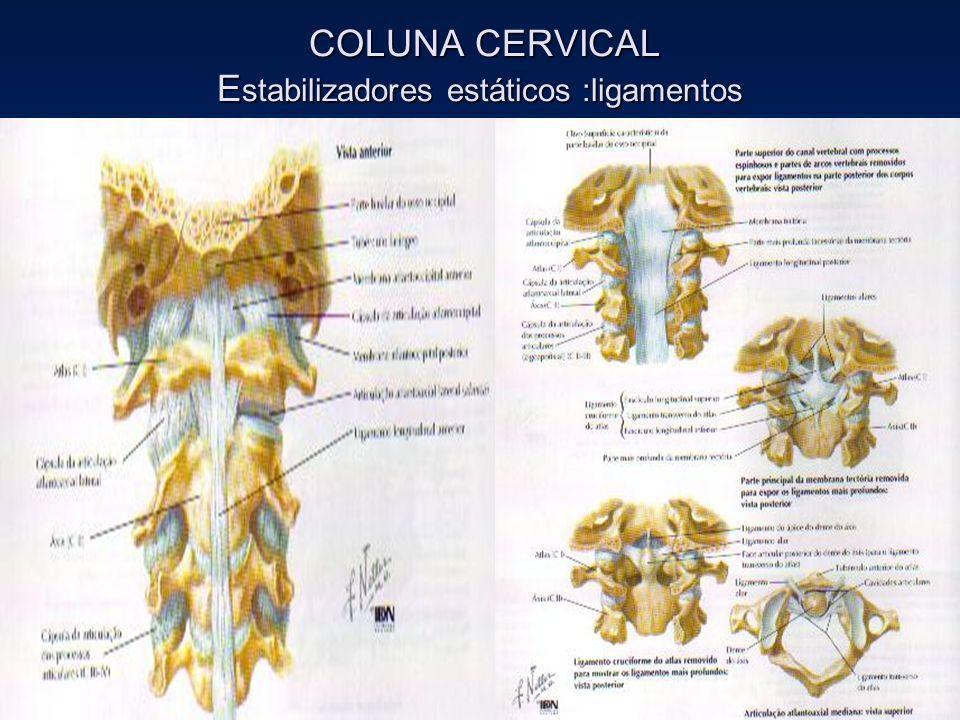 COLUNA CERVICAL E stabilizadores estáticos :ligamentos COLUNA CERVICAL E stabilizadores estáticos :ligamentos