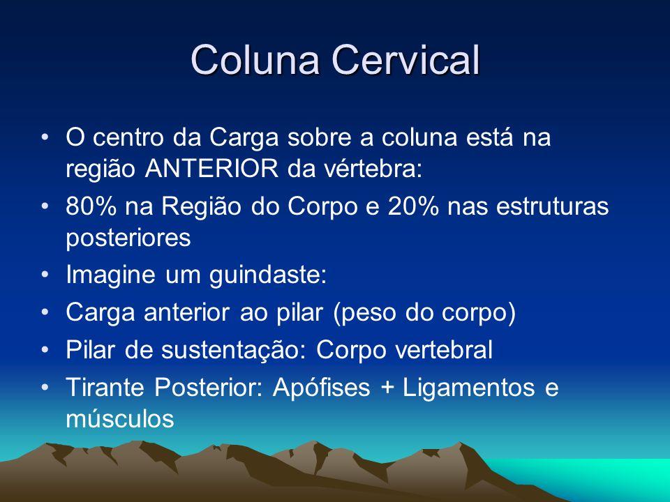 Coluna Cervical O centro da Carga sobre a coluna está na região ANTERIOR da vértebra: 80% na Região do Corpo e 20% nas estruturas posteriores Imagine