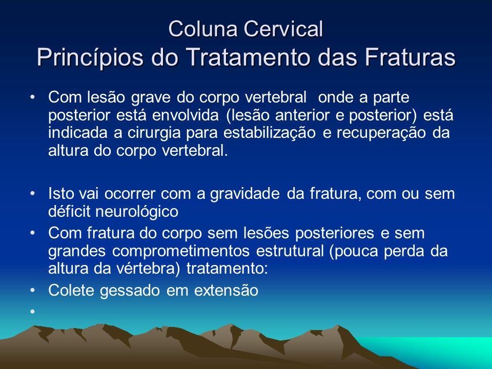Coluna Cervical Princípios do Tratamento das Fraturas Com lesão grave do corpo vertebral onde a parte posterior está envolvida (lesão anterior e poste
