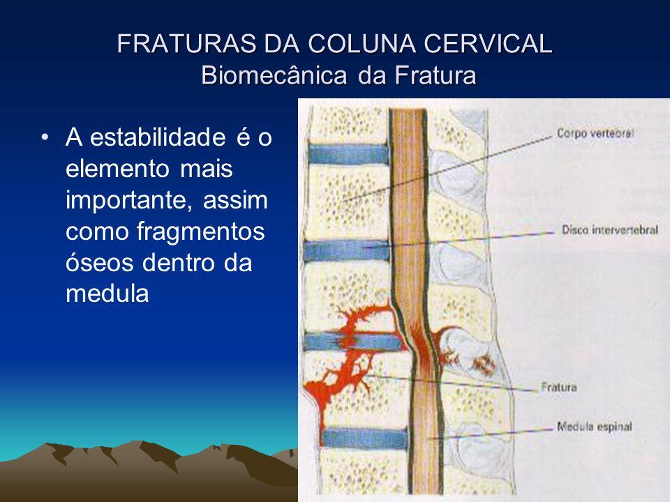 FRATURAS DA COLUNA CERVICAL Biomecânica da Fratura A estabilidade é o elemento mais importante, assim como fragmentos óseos dentro da medula