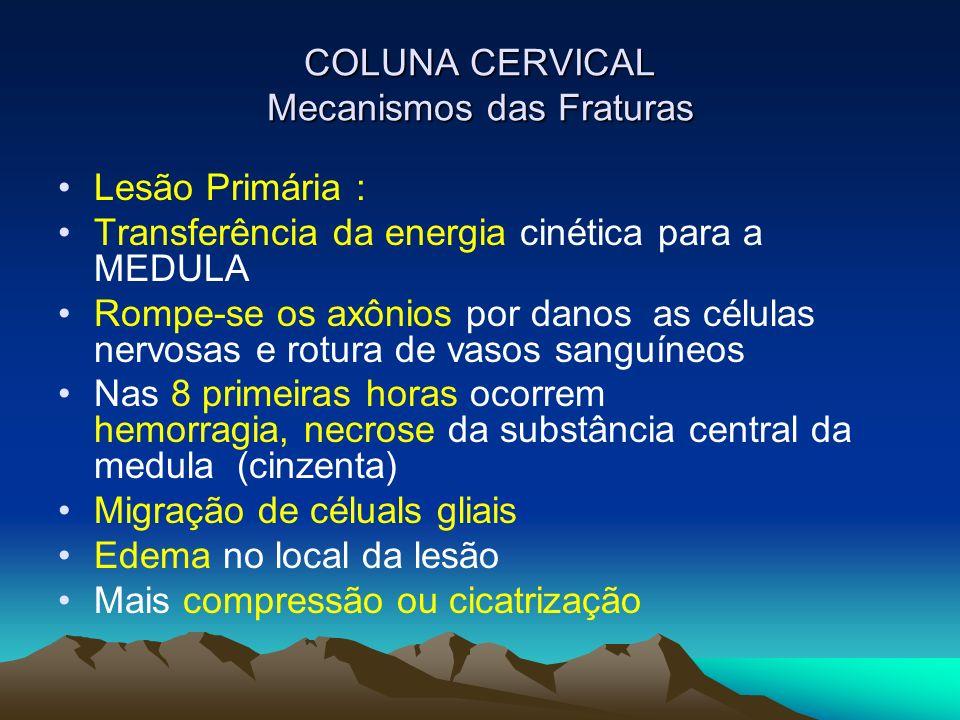 COLUNA CERVICAL Mecanismos das Fraturas Lesão Primária : Transferência da energia cinética para a MEDULA Rompe-se os axônios por danos as células nerv