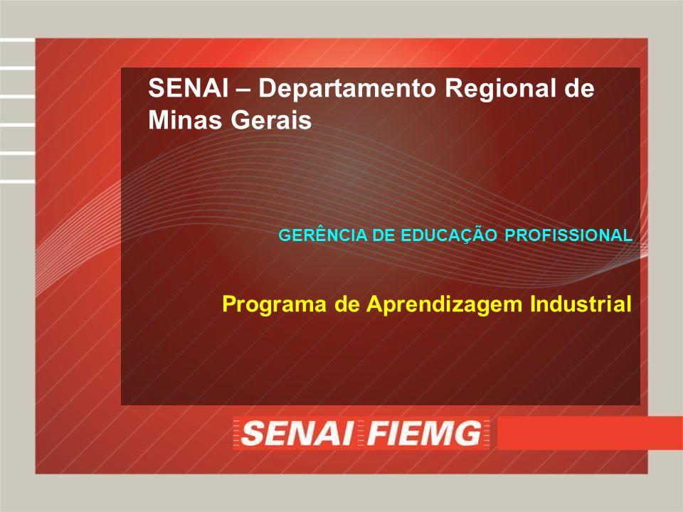 SENAI – Departamento Regional de Minas Gerais GERÊNCIA DE EDUCAÇÃO PROFISSIONAL Programa de Aprendizagem Industrial