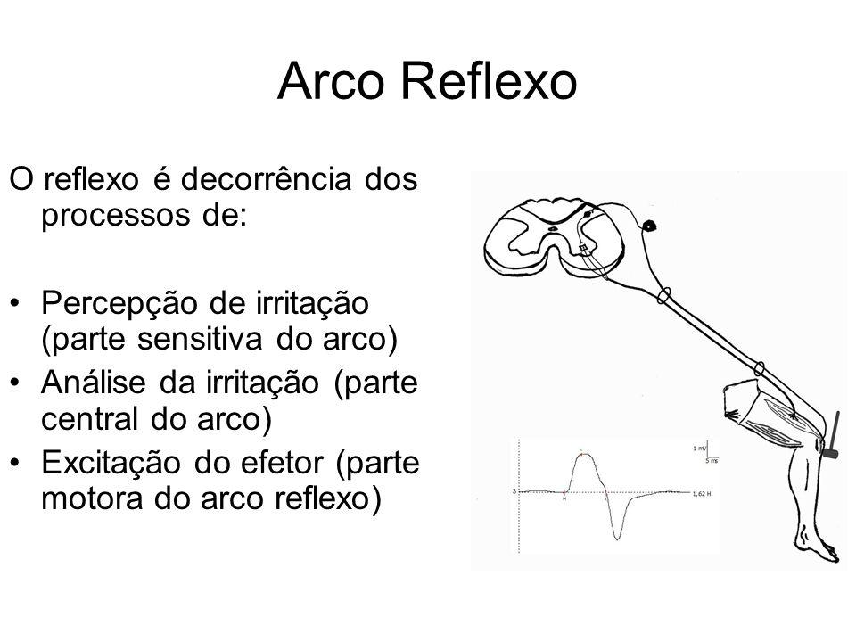 Arco Reflexo O reflexo é decorrência dos processos de: Percepção de irritação (parte sensitiva do arco) Análise da irritação (parte central do arco) E