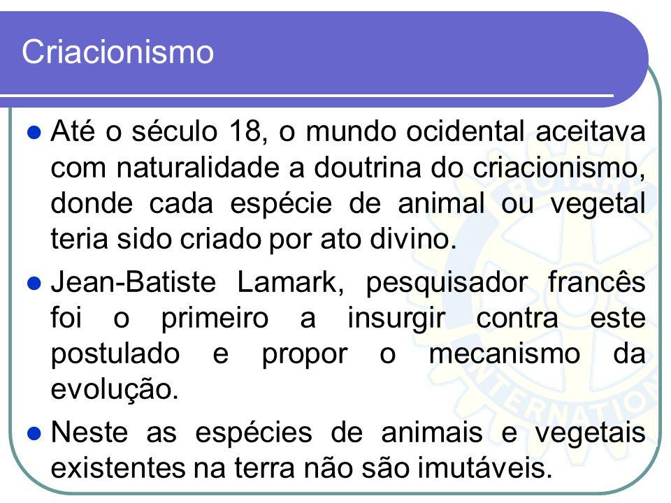 Criacionismo Até o século 18, o mundo ocidental aceitava com naturalidade a doutrina do criacionismo, donde cada espécie de animal ou vegetal teria si