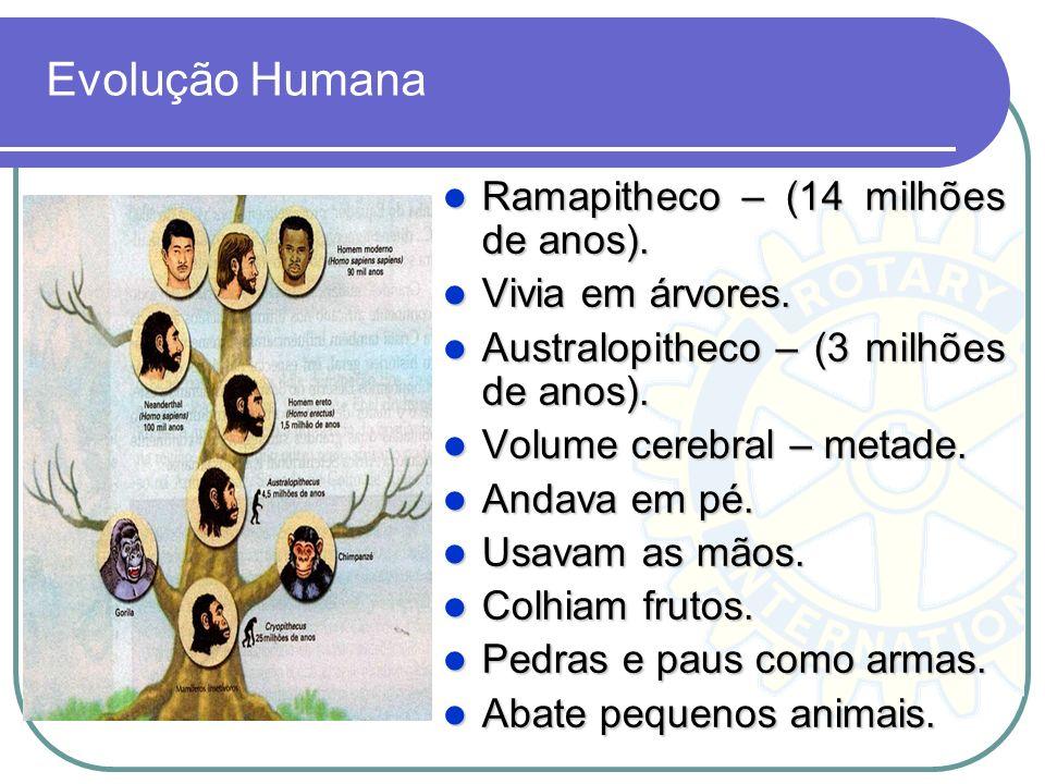 Evolução Humana Ramapitheco – (14 milhões de anos). Ramapitheco – (14 milhões de anos). Vivia em árvores. Vivia em árvores. Australopitheco – (3 milhõ