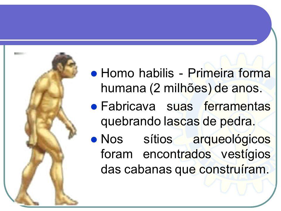 Homo habilis - Primeira forma humana (2 milhões) de anos. Fabricava suas ferramentas quebrando lascas de pedra. Nos sítios arqueológicos foram encontr