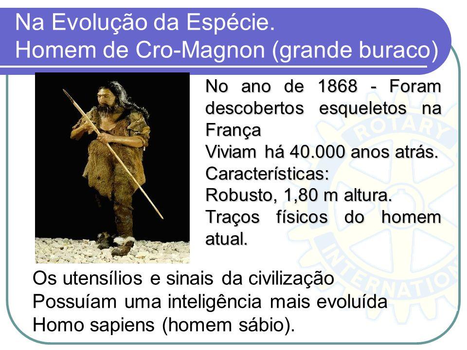 Na Evolução da Espécie. Homem de Cro-Magnon (grande buraco) No ano de 1868 - Foram descobertos esqueletos na França Viviam há 40.000 anos atrás. Carac