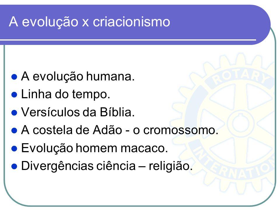 A evolução x criacionismo A evolução humana. Linha do tempo. Versículos da Bíblia. A costela de Adão - o cromossomo. Evolução homem macaco. Divergênci
