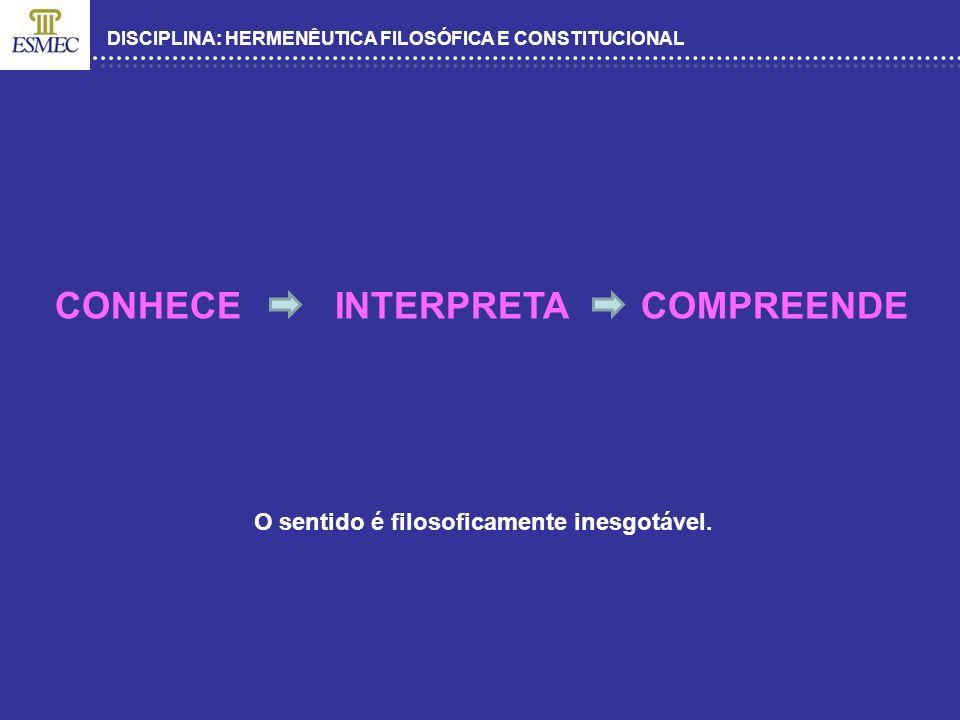 DISCIPLINA: HERMENÊUTICA FILOSÓFICA E CONSTITUCIONAL CONHECE INTERPRETA COMPREENDE O sentido é filosoficamente inesgotável.