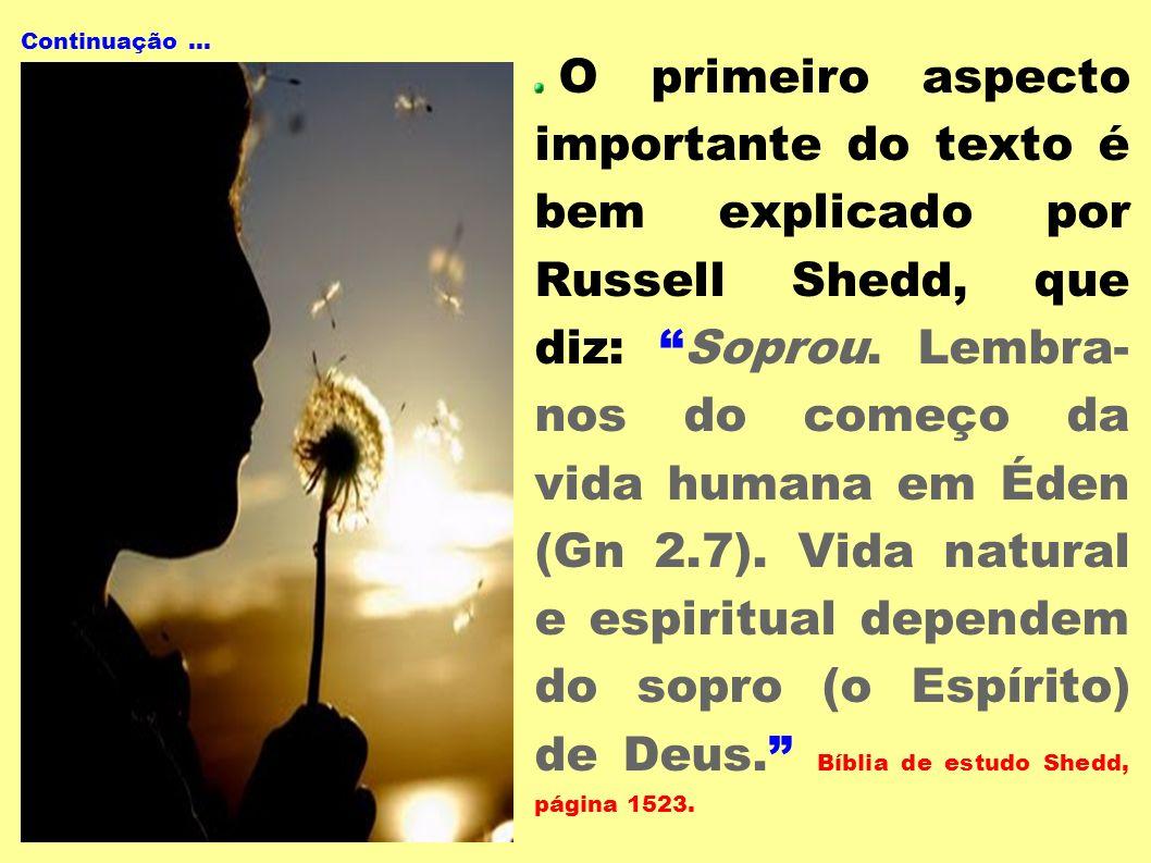 Continuação... O primeiro aspecto importante do texto é bem explicado por Russell Shedd, que diz: Soprou. Lembra- nos do começo da vida humana em Éden