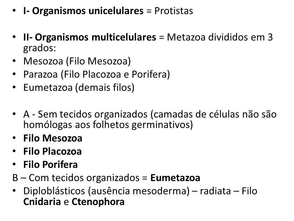 I- Organismos unicelulares = Protistas II- Organismos multicelulares = Metazoa divididos em 3 grados: Mesozoa (Filo Mesozoa) Parazoa (Filo Placozoa e