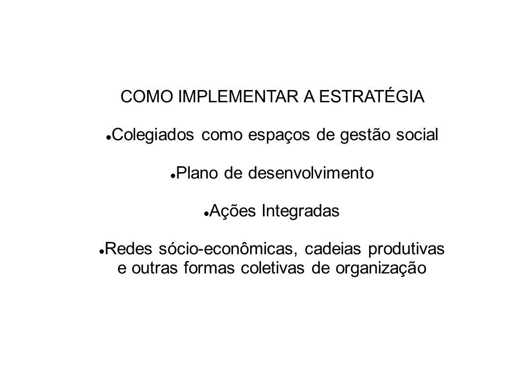 COMO IMPLEMENTAR A ESTRATÉGIA Colegiados como espaços de gestão social Plano de desenvolvimento Ações Integradas Redes sócio-econômicas, cadeias produ