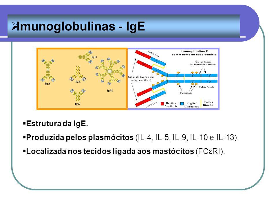 Imunoglobulinas - IgE Estrutura da IgE. Produzida pelos plasmócitos (IL-4, IL-5, IL-9, IL-10 e IL-13). Localizada nos tecidos ligada aos mastócitos (F