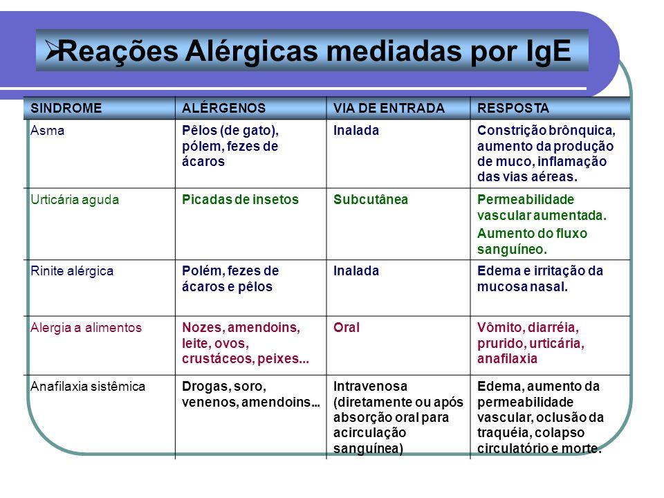 SINDROMEALÉRGENOSVIA DE ENTRADARESPOSTA AsmaPêlos (de gato), pólem, fezes de ácaros InaladaConstrição brônquica, aumento da produção de muco, inflamaç